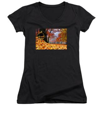 Autumn In The Woodland Women's V-Neck