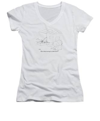 A Giant, Disgruntled-looking Fish Sits Women's V-Neck
