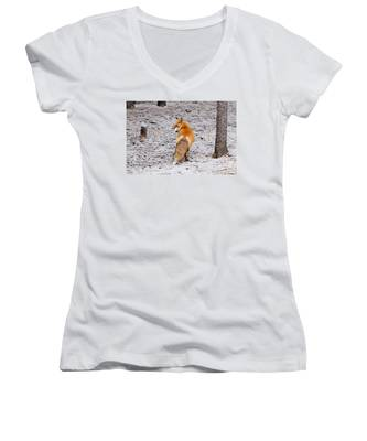 Red Fox Egg Thief Women's V-Neck