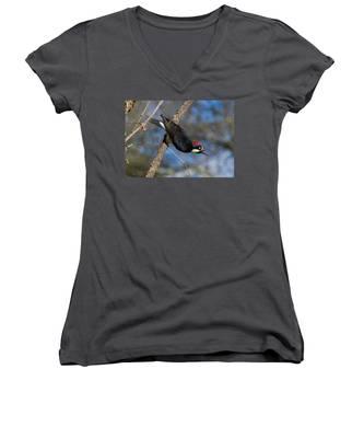 Acorn Woodpecker Women's V-Neck