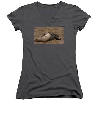 Seal And Pups Women's V-Neck