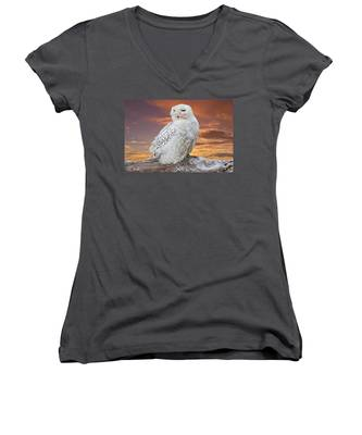 Snowy Owl Perched At Sunset Women's V-Neck