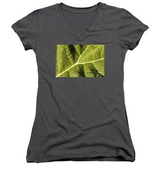 Veins Of A Leaf Women's V-Neck