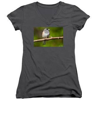 Dark Eyed Junco Perched On A Branch Women's V-Neck