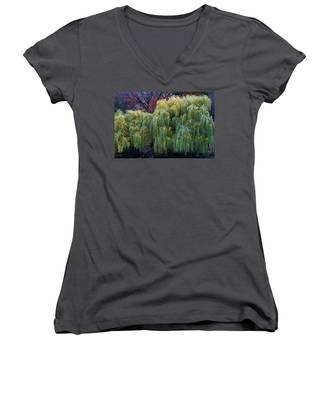 The Willows Of Central Park Women's V-Neck