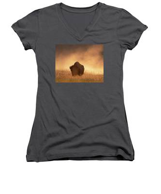 Bison In The Dust 2 Women's V-Neck