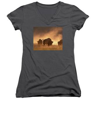 Bison In The Dust Women's V-Neck