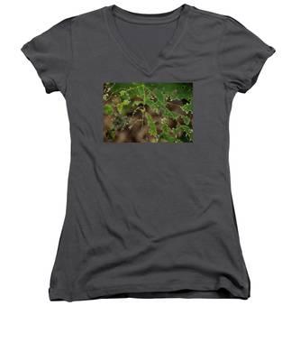 Tasty Tree Women's V-Neck