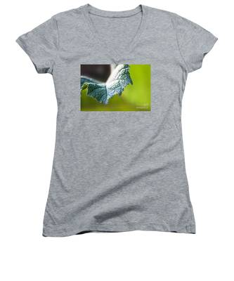 Slice Of Leaf Women's V-Neck