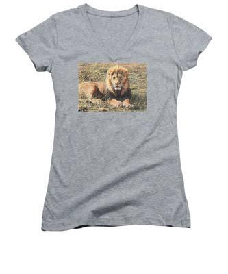 Male Lion Portrait Women's V-Neck