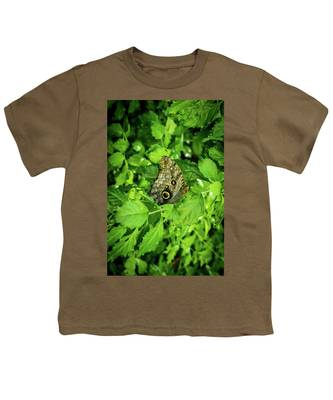 Designs Similar to Grey Butterfly In The Foliage