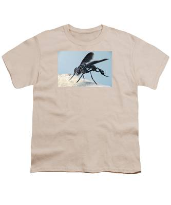 Designs Similar to Black Winged Comb Footed Fly 2