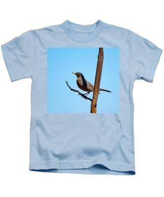 Robin Taking A Break Kids T-Shirt