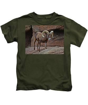 Desert Bighorn Sheep Ram I Kids T-Shirt