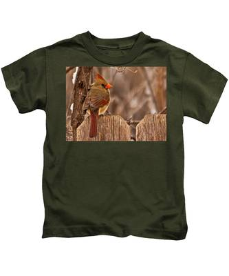 Female Cardinal On The Fence Kids T-Shirt
