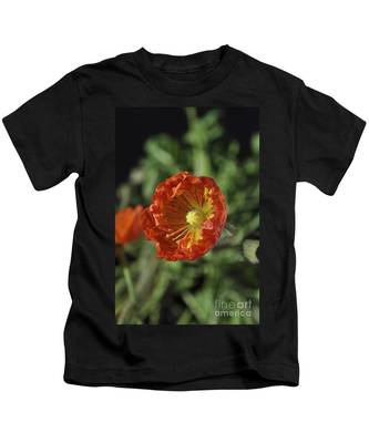 Kids T-Shirt featuring the photograph Blooming Iceland Poppy by Bridgette Gomes