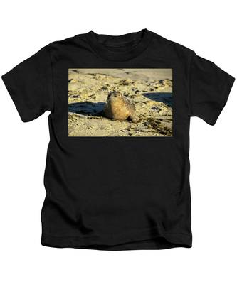 Baby Seal In Sand Kids T-Shirt