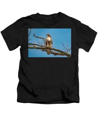 Red Tail Hawk Perched Kids T-Shirt