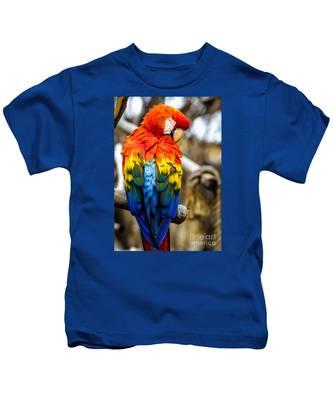 Preening Scarlet Macaw Kids T-Shirt