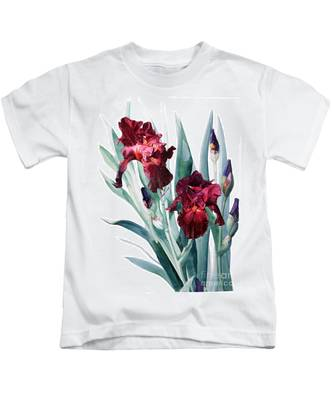 Dark Red Tall Bearded Iris Donatello Kids T-Shirt