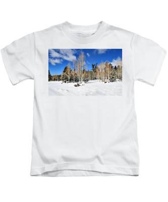 Snowy Aspen Grove Kids T-Shirt