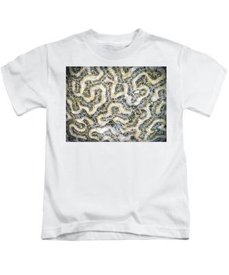 Fossilized Brain Coral Kids T-Shirt