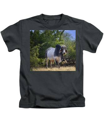 Brahma Cow Kids T-Shirt