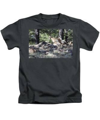 Pronghorn Antelope Fawn Kids T-Shirt