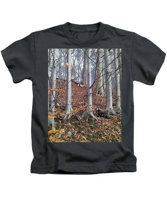 Beech Trees Kids T-Shirt