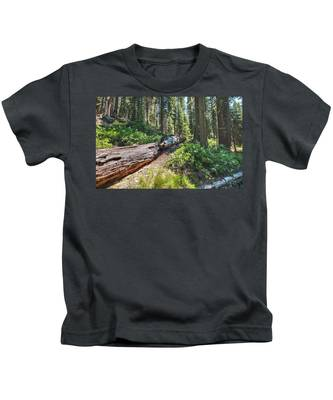 Fallen Tree- Kids T-Shirt