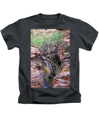 The Hole - Mount Lemmon Kids T-Shirt
