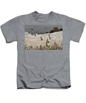 Kids T-Shirt featuring the photograph Pelicans Seals N Daisies  by Bridgette Gomes