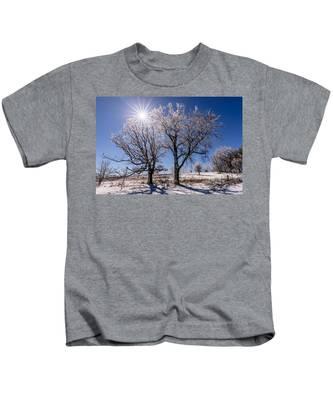 Ice Coated Trees Kids T-Shirt