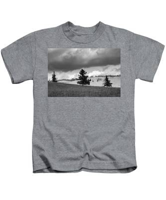 Moody Meadow, Tsenkher, 2016 Kids T-Shirt