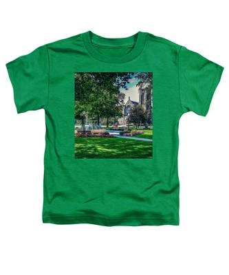 Summer In Juckett Park Toddler T-Shirt