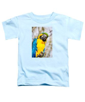Blue And Gold Macaw Parrot Toddler T-Shirt