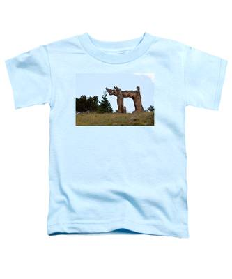 Pi In The Sky Toddler T-Shirt