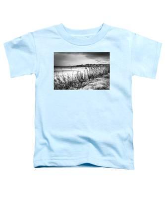 Beach In Ogunquit Toddler T-Shirt