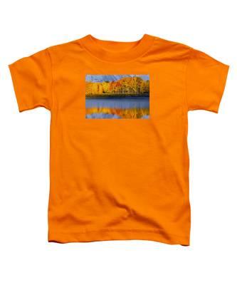 Aspen Reflection Toddler T-Shirt