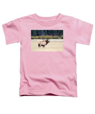 Big Colorado Bull Toddler T-Shirt
