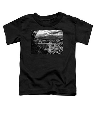 Alder Dam Near Mt Rainer Wa Toddler T-Shirt