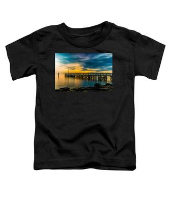 Birds On The Dock Toddler T-Shirt