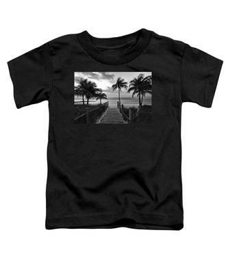 Calm Before Storm Toddler T-Shirt
