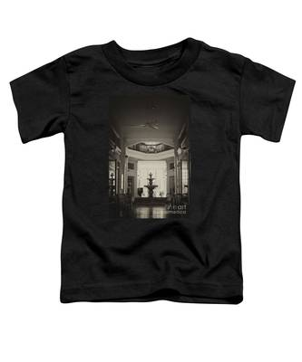 Fountain In The Light Toddler T-Shirt