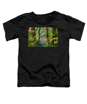 Land Of The Noonday Sun Toddler T-Shirt
