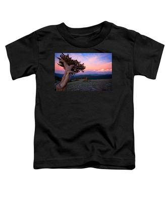 Lonesome Pine Toddler T-Shirt