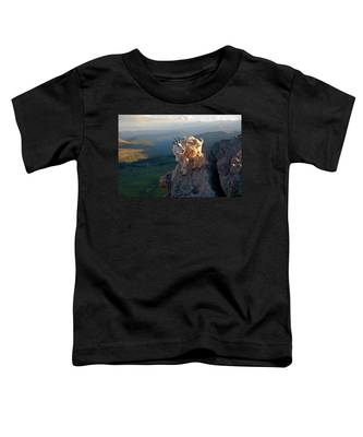 On A Clear Day Toddler T-Shirt