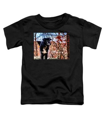 Sky Looking Toddler T-Shirt