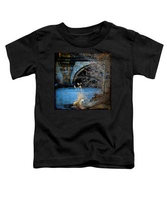 A Frozen Corner In Central Park Toddler T-Shirt
