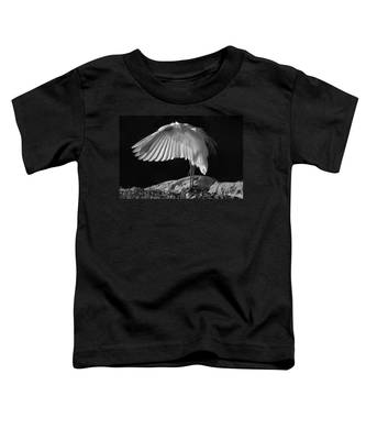 Preening Great Egret By H H Photography Of Florida Toddler T-Shirt